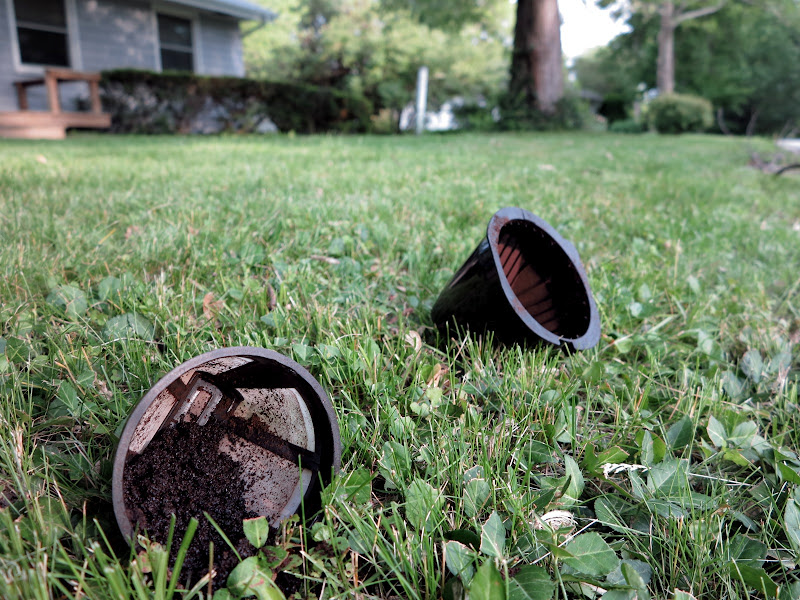 Coffee filter and grounds in yard