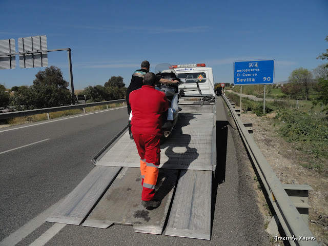 marrocos - Marrocos 2012 - O regresso! - Página 10 DSC08289