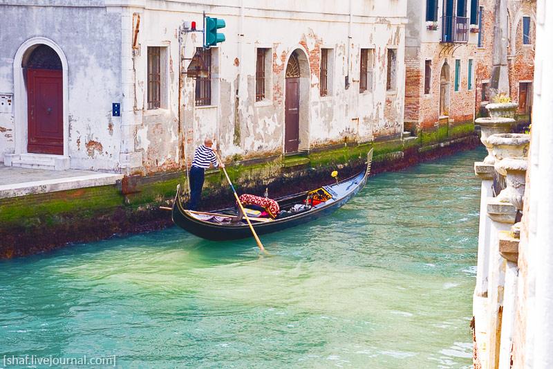 http://lh6.googleusercontent.com/-1yDaWkq9crA/S_RRZTjUucI/AAAAAAAAUAY/B-x75jPw8cw/s800/20100410-132721_Venice.jpg