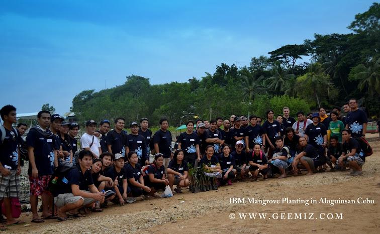 IBM Mangrove Tree Planting Year 3