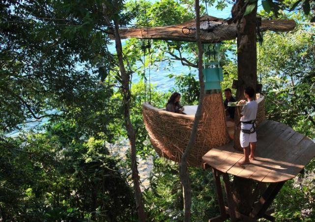 Restoran Mewah Di Atas Pohon