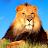 jared ofarrell avatar image