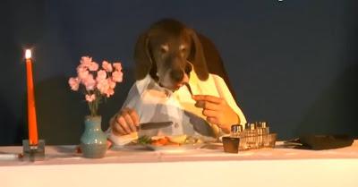 Depois De Um Dia De Cão, Nada Como Uma Refeição De Luxo À Mesa De Um Restaurante Fino