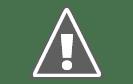Google Cultural Institute mette i tesori del mondo culturale sulla punta delle tue dita. Inizia selezionando una mostra o un progetto. Cerca una parola chiave oppure utilizza il menu esplora per trovare altri partner e categorie.