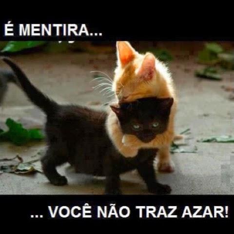 Cantinho Das Ideias Gato Preto Não Dá Azar Sexta Feira 13