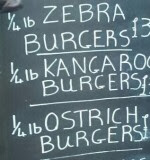 zebra, kangaroo and ostritch slaughtered