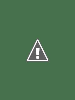 АКЕВ Зубова Ольга