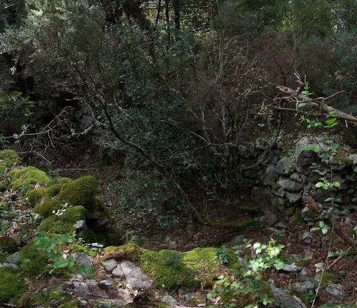 Les vestiges des bergeries de Recciu