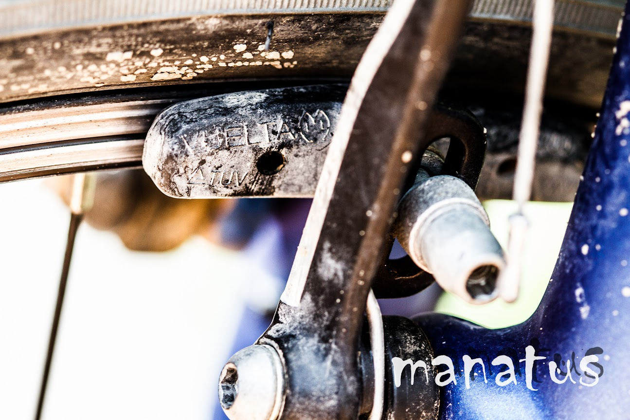 manatus foto blog detalle de bicicleta