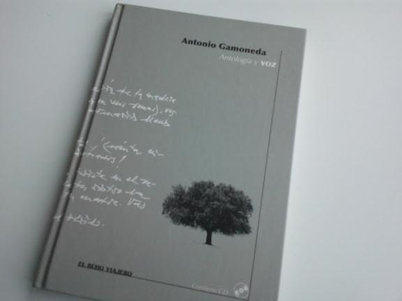 Antología y Voz.- Antonio Gamoneda