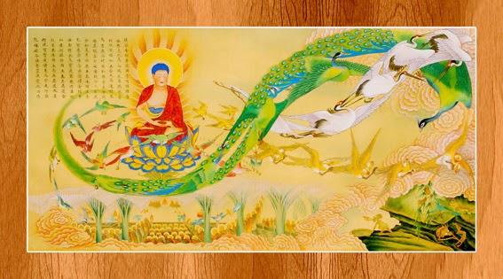 Bộ ảnh đẹp minh họa bản Kinh A Di Đà 7