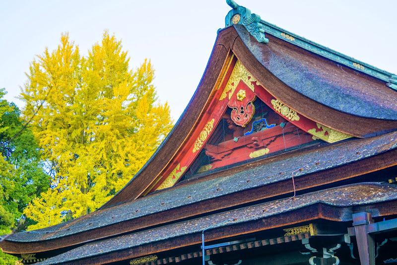 京都 紅葉 北野天満宮 写真2