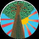 Signature Tree Care