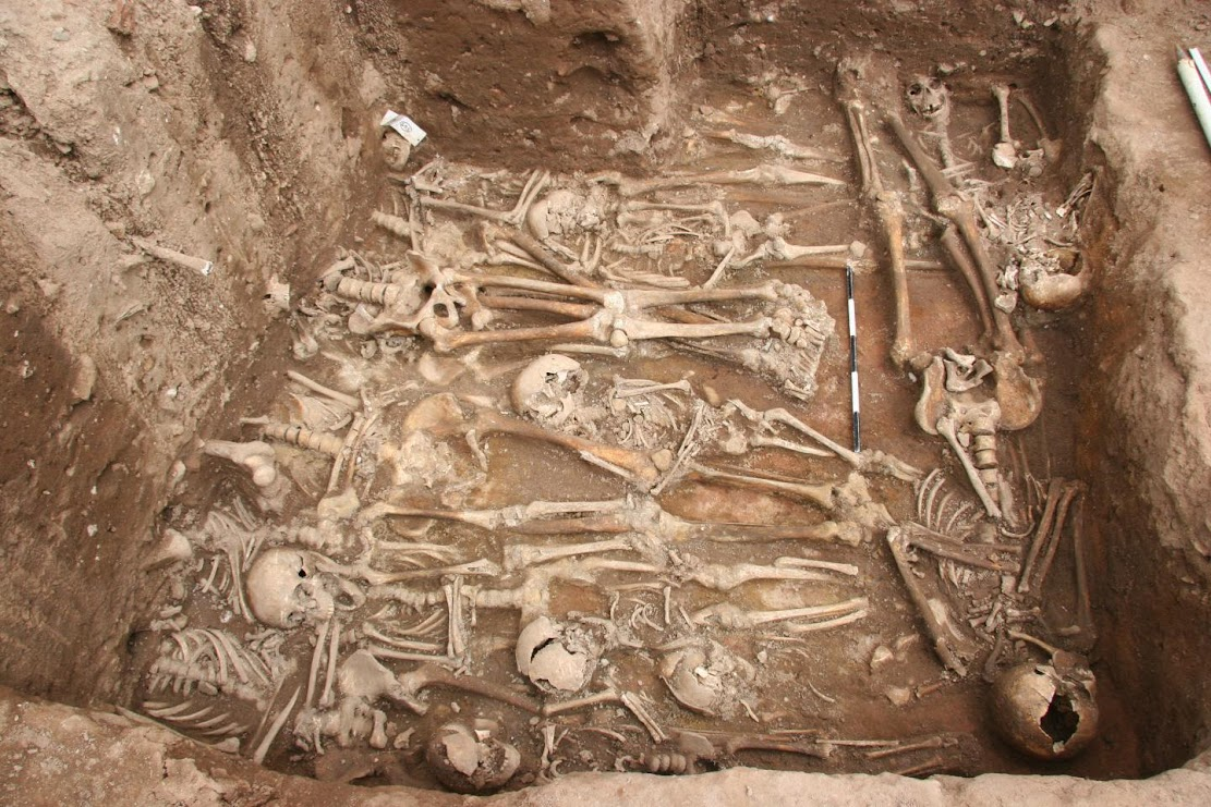 Forensics: Single strain of plague bacteria sparked multiple historical and modern pandemics