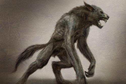 Autochtone Creatures Legendaires Suite