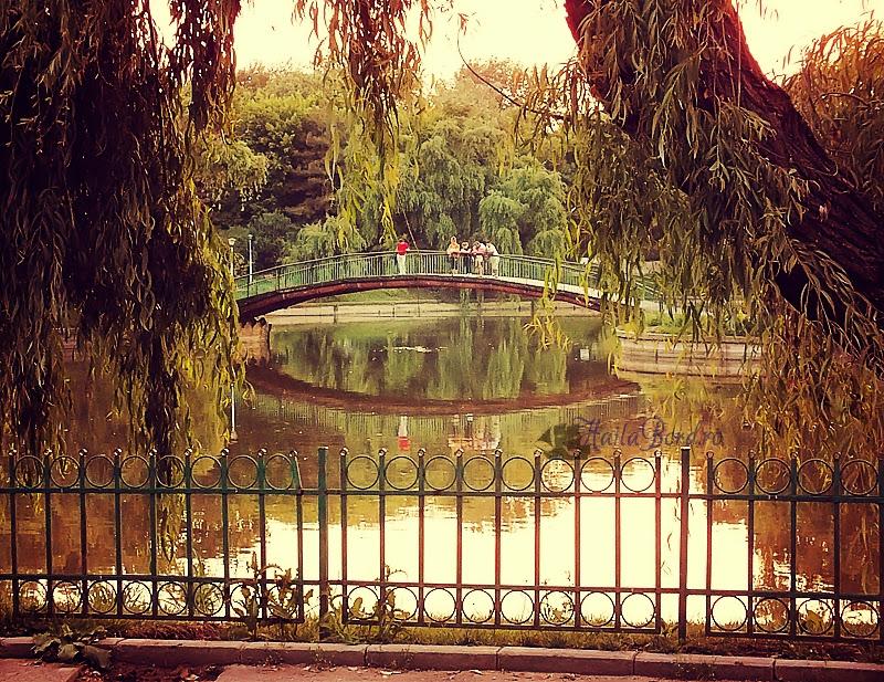 pod parcul morarilor bucuresti