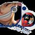 تحميل حلقة ون بيس 570 | One Piece 570