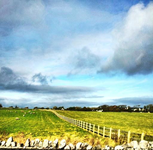 Irlanda           IMG_20121108_112302