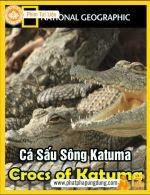 Cá Sấu Sông Katuma