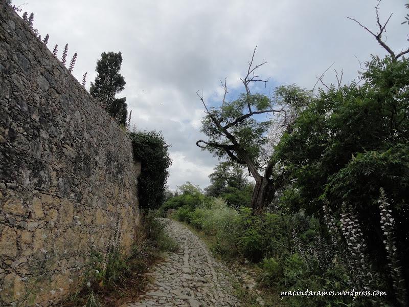 passeando - Passeando até aos Correias... ou o passeio dos 4 castelos! DSC01132