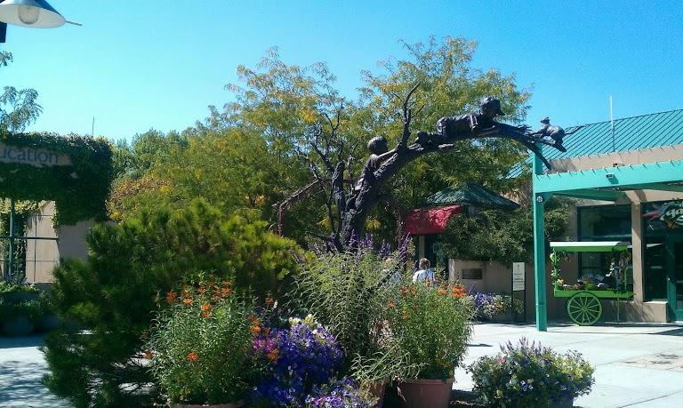 ABQ BioPark Botanic Garden, Albuquerque - RueBaRue