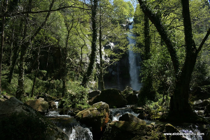 Cascada Firvia
