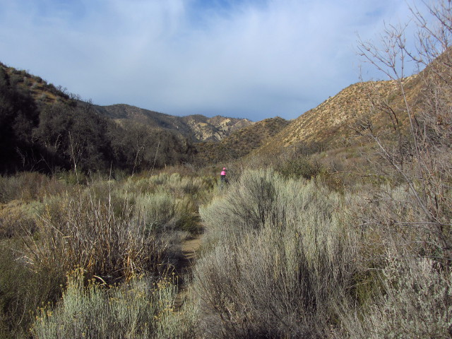 pink hard hats on the trail