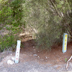 Track away from Bundeena Drive (35240)