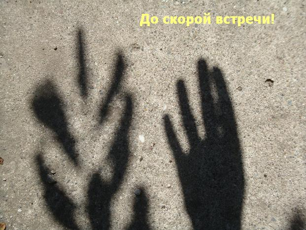 фотографии тени