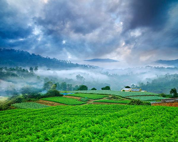 Ve-Dep-Viet-Nam-voluongcongduc.com-10