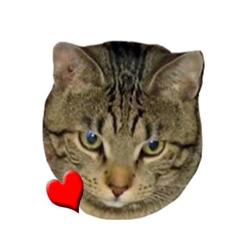 Profile picture of mtmama~Pa