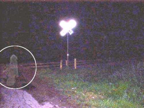 Are Ghosts Real Via Taryn Crimi
