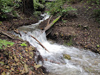 Creek crossing along Corte Madera Creek Trail