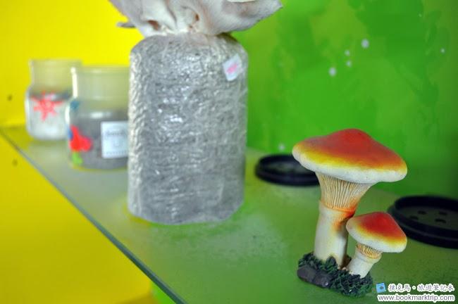 魔菇部落生態休閒農場栽培魔菇作品集