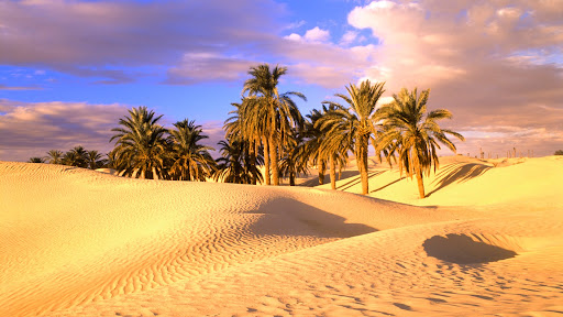 Sahara Desert, Tunisia.jpg