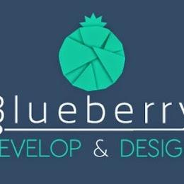 Blueberry Solutions Sh.p.k. logo