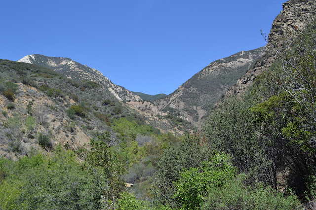 view from a high bit of trail