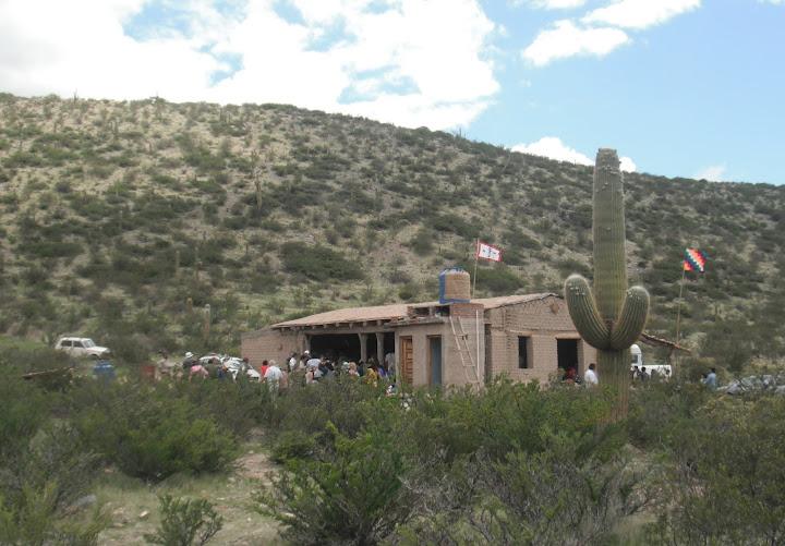 Wayra-cactus