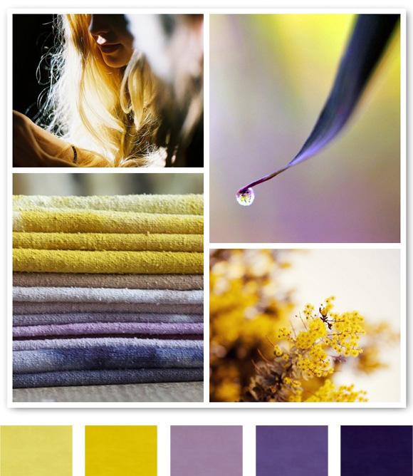 Purple Colour Scheme: PURPLE Colour Meaning : Colour Meanings