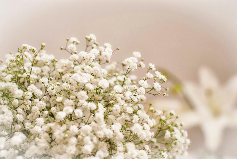 Una flor muy de moda en bodas