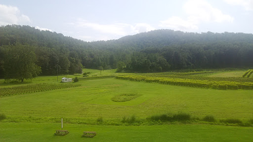 Winery «Loving Cup Vineyard & Winery», reviews and photos, 3340 Sutherland Rd, North Garden, VA 22959, USA