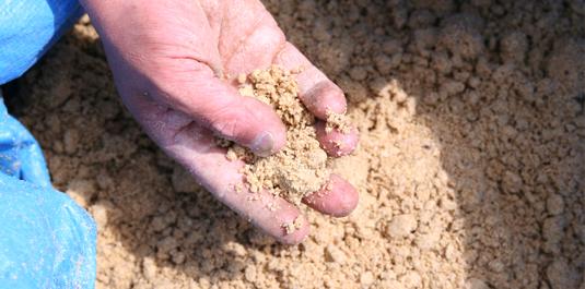 米糠で菌を培養