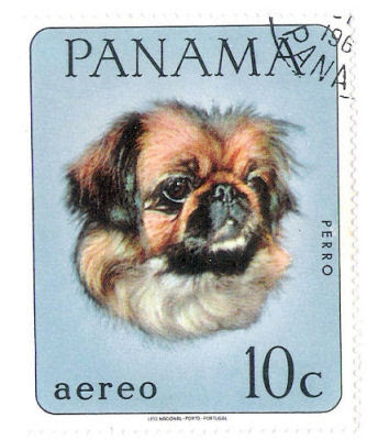 Panama Peke