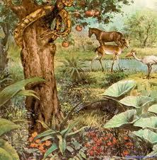 Agua viva adan y eva for Adan y eva en el jardin del eden para colorear