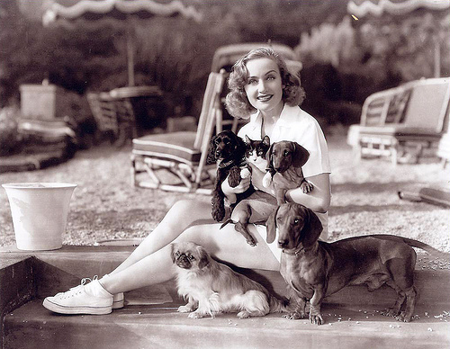 Carol Lombard and dogs and a cat