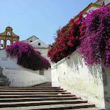 Álbum fotográfico de Patios de Córdoba