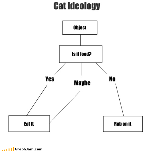 funny graph of cat logic