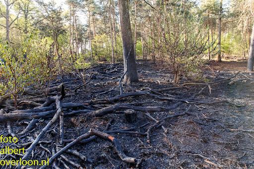 nacontrole  bosbrand Overloon 18-04-2014 (29).jpg