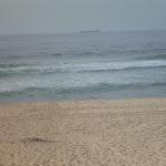 Redhead Beach (391097)