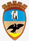Современный герб Таращи
